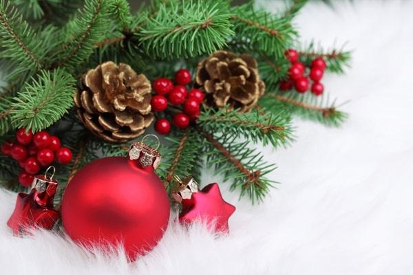 CIBPA Holiday Basket Donations